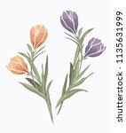 beauty flower design element... | Shutterstock .eps vector #1135631999