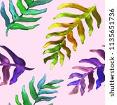 watercolor hand drawn summer... | Shutterstock . vector #1135651736