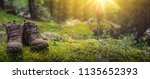 pair of touristic boots on moss ... | Shutterstock . vector #1135652393