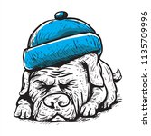 sleeping cute dog with blue hat ... | Shutterstock .eps vector #1135709996