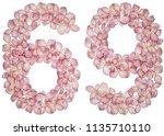 arabic numeral 69  sixty nine ... | Shutterstock . vector #1135710110