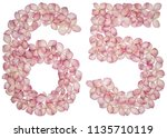 arabic numeral 65  sixty five ... | Shutterstock . vector #1135710119