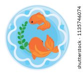 goldfishs in aquarium jar | Shutterstock .eps vector #1135746074
