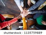multiracial cheerful colleagues ... | Shutterstock . vector #1135759889