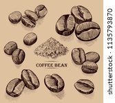 coffee beans sketches... | Shutterstock .eps vector #1135793870
