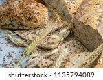 assortment of baked goods on... | Shutterstock . vector #1135794089
