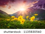 vibrant mountain landscape with ... | Shutterstock . vector #1135830560