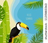 tropical summer design template.... | Shutterstock .eps vector #1135883363