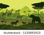 animals and wildlife green... | Shutterstock .eps vector #1135892423