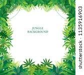 tropical jungle frame  forrest  ... | Shutterstock .eps vector #1135916903