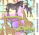 seamless pattern  background ... | Shutterstock .eps vector #1135920089
