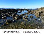 Australian Coastline  Halliday...