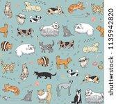 different doodle vector cats... | Shutterstock .eps vector #1135942820
