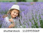 child girl is in the lavender... | Shutterstock . vector #1135955069