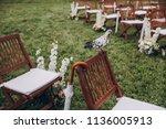 in area of wedding ceremony on... | Shutterstock . vector #1136005913