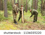 forestry inspector with a group ... | Shutterstock . vector #1136035220