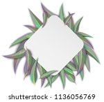 white rhombus background with... | Shutterstock .eps vector #1136056769