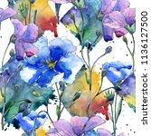 blue flax flower. floral...   Shutterstock . vector #1136127500