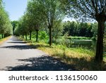 hiking path and ditch in ... | Shutterstock . vector #1136150060