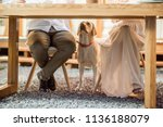 hungry dog waiting for food... | Shutterstock . vector #1136188079