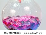 boiling blueberry in laboratory ... | Shutterstock . vector #1136212439