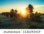 sundown over trees and...   Shutterstock . vector #1136292419