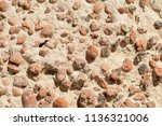 concrete or cement texture for... | Shutterstock . vector #1136321006