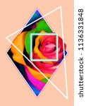 geometric collage with multi... | Shutterstock . vector #1136331848