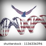 eagle and dna chain in national ... | Shutterstock . vector #1136336396