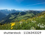 Panoramic view from the Stanserhorn in Switzerland with flower grassland.