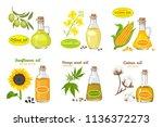 vector set of seed oils... | Shutterstock .eps vector #1136372273