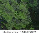 contemporary art. hand made art.... | Shutterstock . vector #1136379389