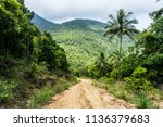 A Dirt Road Down Among The...