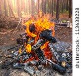 fire | Shutterstock . vector #113638228