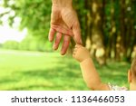 the parent holds the hand of a... | Shutterstock . vector #1136466053