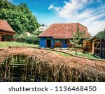 captivating summer view of...   Shutterstock . vector #1136468450