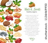 page design template with nuts... | Shutterstock .eps vector #1136469950