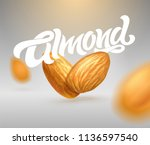 almond typography with... | Shutterstock .eps vector #1136597540
