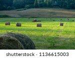 hale bales in field | Shutterstock . vector #1136615003