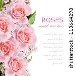 wedding background with pink...   Shutterstock . vector #113664298