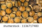 a pile of stacked firewood ... | Shutterstock . vector #1136717483