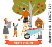 happy family is picking apples... | Shutterstock .eps vector #1136724524