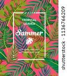 trendy summer tropical leaves... | Shutterstock .eps vector #1136766209