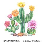 Watercolor With Cactus Garden....