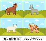 set of domestic animals color... | Shutterstock .eps vector #1136790038