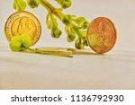 currency flower flower... | Shutterstock . vector #1136792930