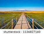 wooden bridge walkway path on...   Shutterstock . vector #1136827160