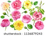 big set of yellow and pink...   Shutterstock . vector #1136879243