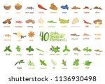 set of 40 different culinary... | Shutterstock .eps vector #1136930498