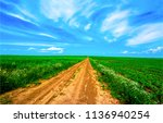 summer rural field road... | Shutterstock . vector #1136940254